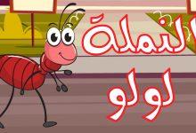 Photo of 3 قصص قصيرة طارق البكري قصة النملة الشقية