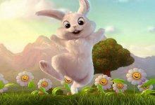 Photo of قصص للأطفال الصغار مكتوبة آذان الأرنب الطويلة