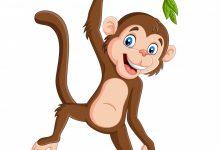 Photo of القرد الغاضب قصة جميلة للأطفال قبل النوم بقلم منى حارس