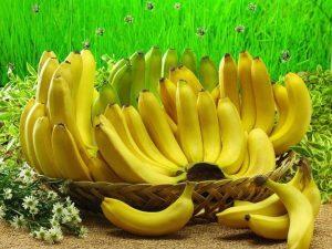 القرد المحتال وقشرة الموز قصة جميلة للأطفال قبل النوم بقلم منى حارس