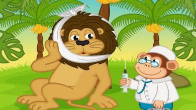 Photo of القرد عبقرينو