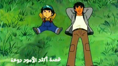 Photo of قصة أكثر الأمور روعة