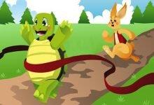 Photo of قصة الأرنب والسلحفاة