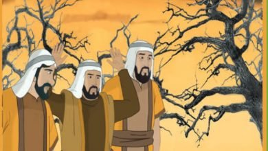 Photo of قصة الإخوة الثلاثة