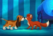 Photo of قصة الثعلب العجوز والكلب