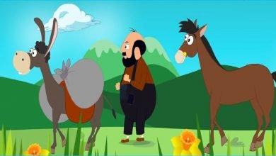 Photo of قصة الحصان مكًار