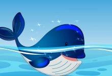 Photo of قصة الحوت السعيد