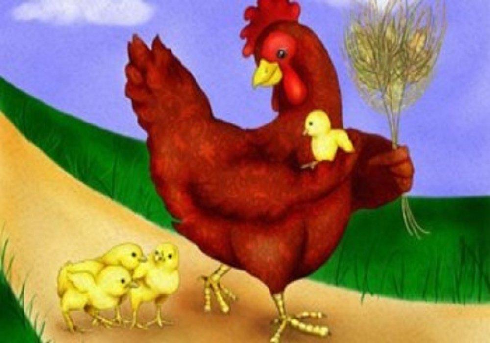 قصة الدجاجة الطيبة