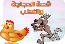 Photo of قصة الدجاجة والثعلب