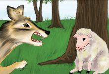 Photo of قصة الذئب والكلاب قصة جميلة من حكايات جدتي سعاد