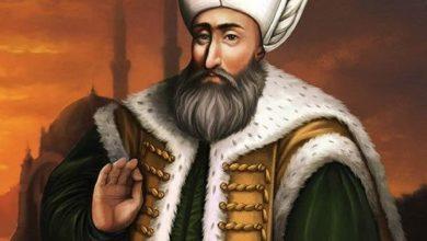 Photo of قصة السلطان سليمان القانوني والنمل
