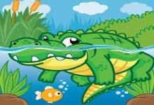 Photo of قصة السمكة المغرورة