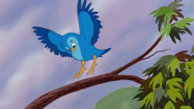 Photo of قصة الطائر الأزرق