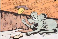 Photo of قصة الفأر الطماع