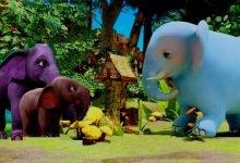 Photo of قصة الفيل قنديل