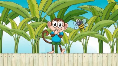 Photo of قصة القرد الذي ترك عادته