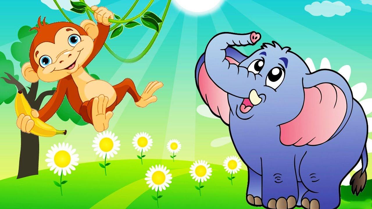 قصة القرد والفيل