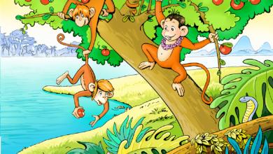 Photo of قصة القرود والماء