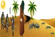 Photo of قصة النبي سليمان والنملة