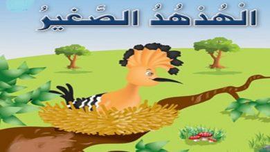 Photo of قصة الهدهد الصغير والنملة