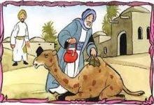 Photo of قصة ثأر الجمل من صاحبه