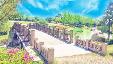 Photo of قصة جسر المحبة