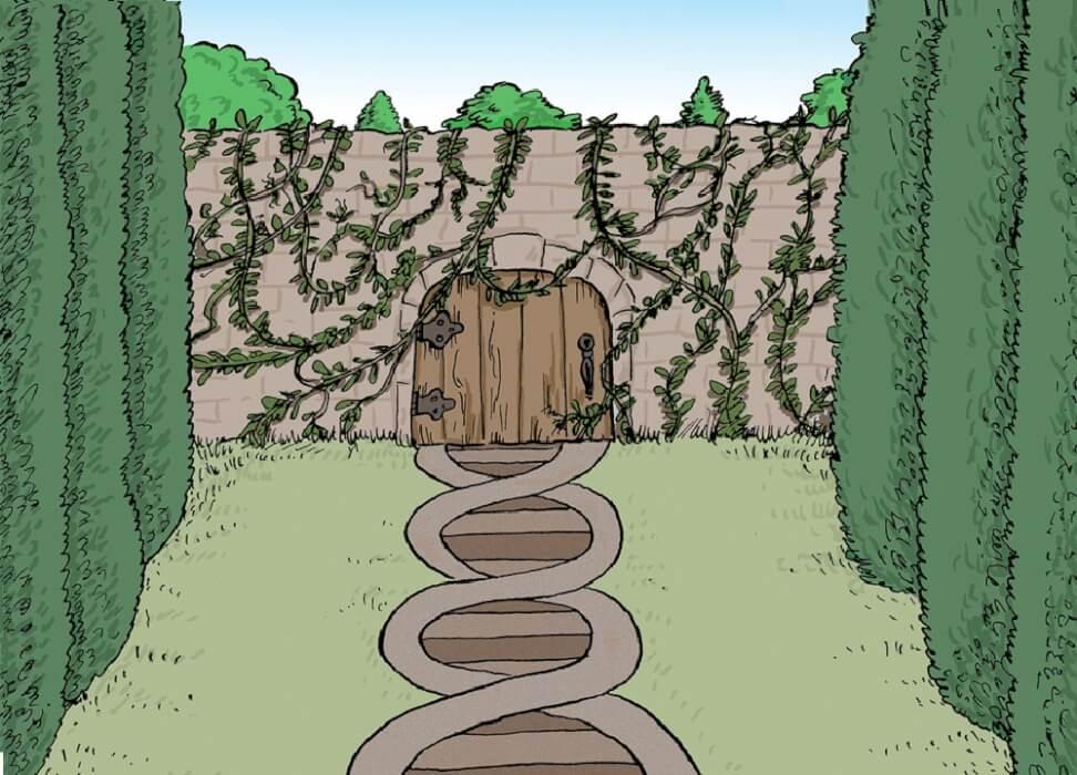 قصة رواية الحديقة السرية