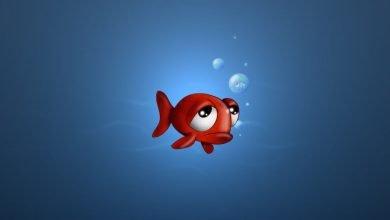 Photo of قصة سمكة الجرّي وبركة كوساي