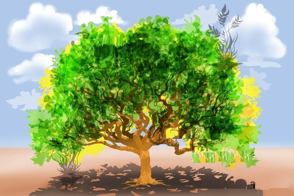 قصة شجرة الأمنيات