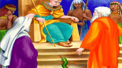 Photo of قصة قارون و المال
