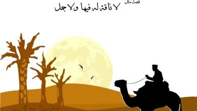 "Photo of قصة ""لا ناقة له فيها ولا جمل"""