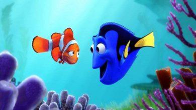 Photo of قصة مغامرة السمكة الصغيرة