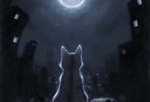Photo of قصة مينو والقمر