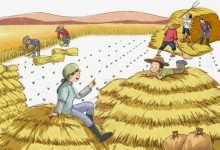 Photo of قصة يوم الحصاد