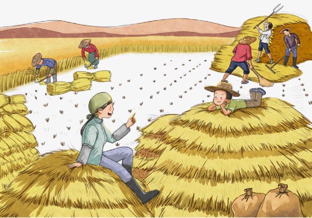 قصة يوم الحصاد