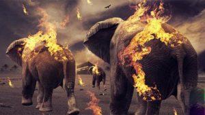 قصص القران سورة الفيل ميسرة لتعليم أطفالنا الصغار