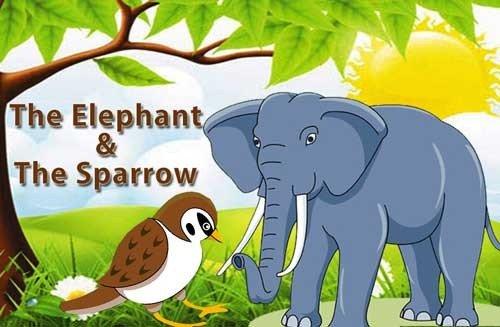 من حكايات جدي سالم قصة الفيل الصغير والعصفور بقلم منى حارس