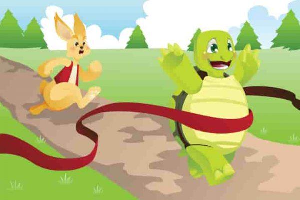قصة الأرنب والسلحفاة - قصة هادفة رائعة