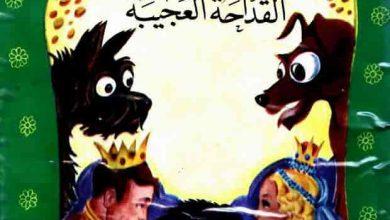 Photo of قصة القداحة العجيبة – قصص اطفال قبل النوم
